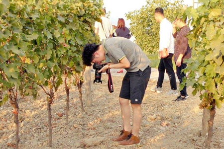 Wine importers from China visit Georgia to explore local wine